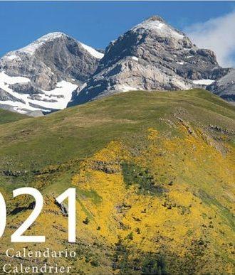 Pyrene_2021-min