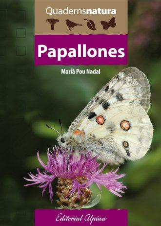 papallones-min