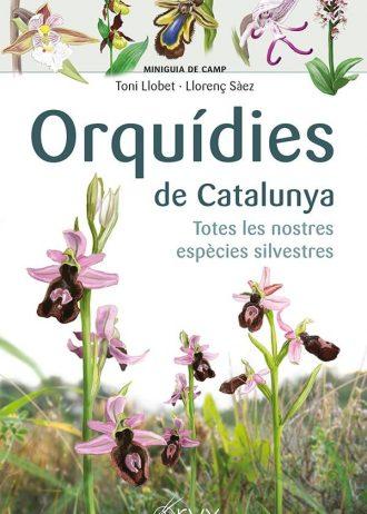 Orquidies