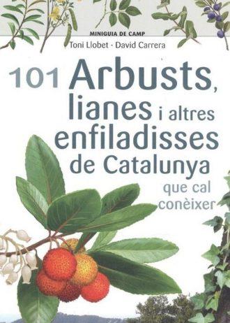 arbustos-enfiladisses