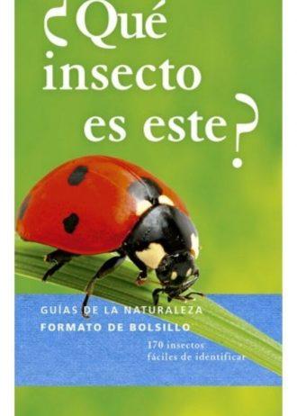 que-insecto-es-este